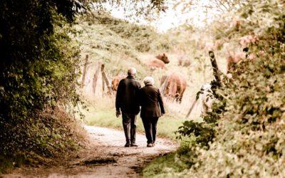 Un Real Decreto garante de las pensiones públicas y las prestaciones sociales